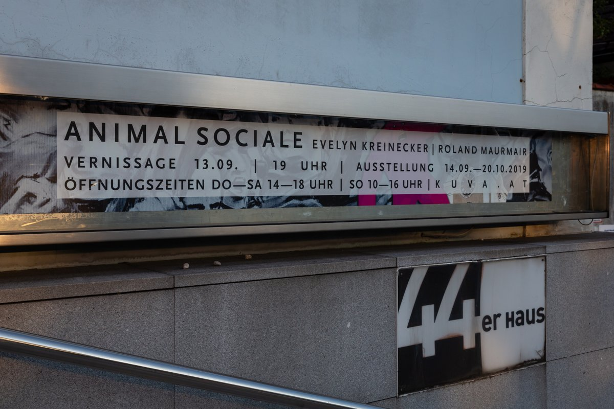 Animal Sociale by Renate Billensteiner
